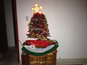 Bill & Elaine's festive Christmas tree (the star was on her tree as a child)