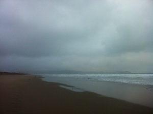...this morning, this was my beach walk view.