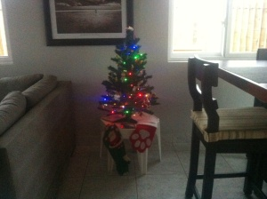 My little tree I bought my first year here, decorated with all the favorite ornaments I'd saved and brought from home